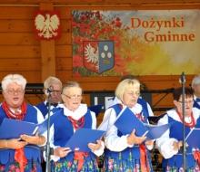 dożynki gminne wWitkowicach (92)
