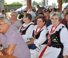 dożynki gminne w Witkowicach (55)