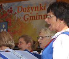 dożynki gminne w Witkowicach (95)