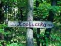 20.10.2012r. drogowskaz na drodze do kapliczki w lesie