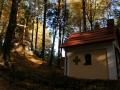 20.10.2012r. kapliczka w lesie 3