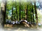 Msza przy Kapliczce Leśnej - maj 2016